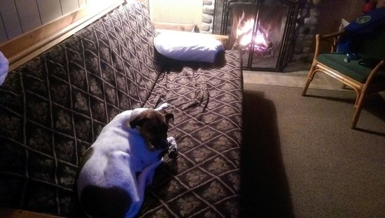 Pemi Cabins : The pup enjoying the fireplace