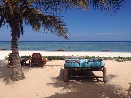 AfroChic Diani: Пляж