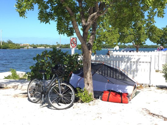 Boyd's Key West Campground : My tent site