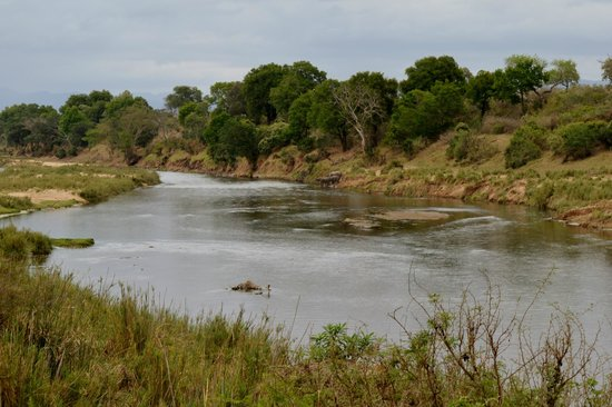 River House Lodge: View of the KNP from the River House deck