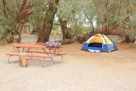 Furnace Creek Resort & Fiddler's Campground: Camping