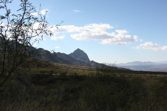 Madera Canyon: View of surrounding area from Proctor area