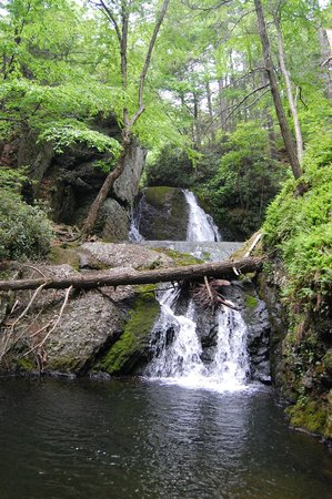 Pocono Environmental Education Center: Tumbling Waters Hiking Trail