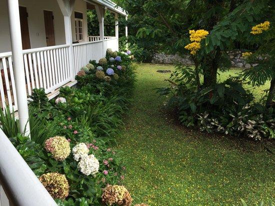 Casa Romero : Well kept grounds