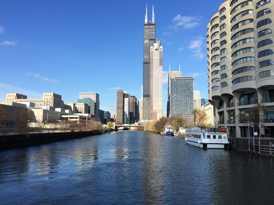 Willis Sears Tower Picture Of Shoreline Sightseeing