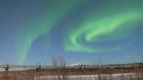 1st Alaska Tours: Northern Lights