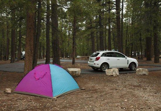 North Rim Campground: Просторные участки