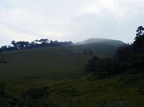 Naladi Holidays: Kabbe Hills