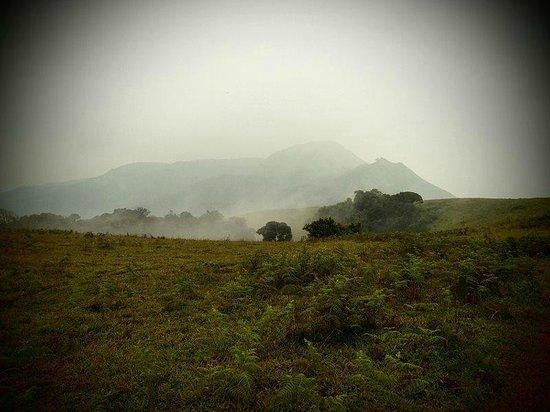 Naladi Holidays: Early morning mist at Kabbe Hills