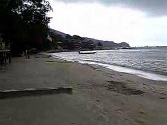 Koh Tao Divers: Praia de Koh Tao