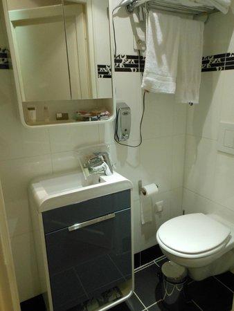 Hotel Regina Montmartre : Baño