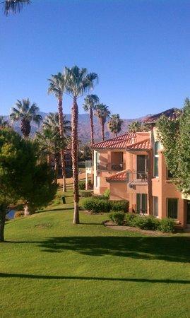 Marriott's Desert Springs Villas II : Resort view