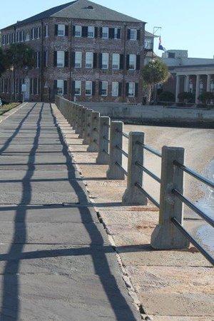 Gray Line Tours Charleston Sc Reviews