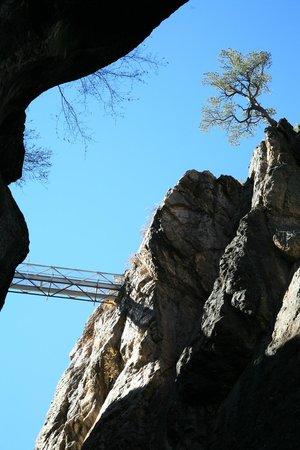 Ouray Box Canyon Waterfall: Box Canyon Bridge