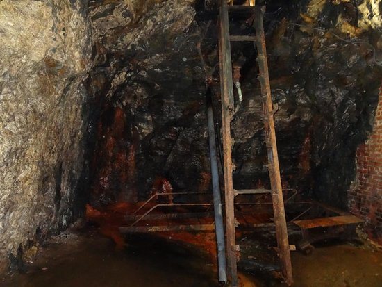 D.G. Yuengling and Son Brewery: abandoned ladder in caves