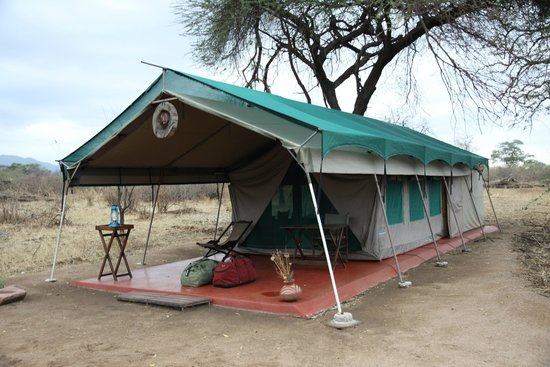 Mdonya Old River C& Tent Accommodation & Tent Accommodation - Picture of Mdonya Old River Camp Ruaha ...