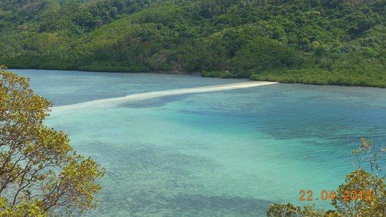 Snake Island (Vigan Island): Ahi se ve el extremo de plantas donde no se puede ir mas allá