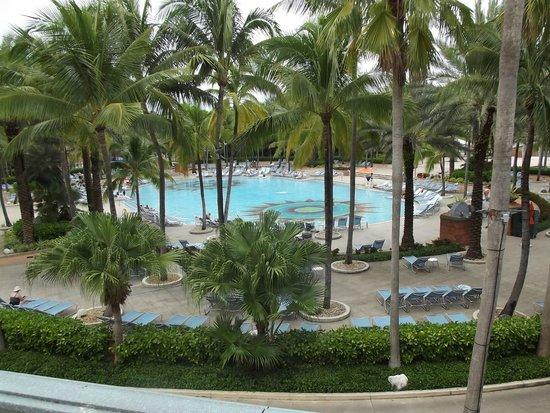 Atlantis Casino : Swimming Pool at Atlantis