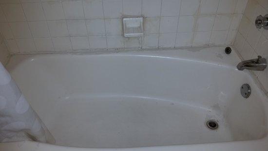 Econo Lodge: bathtub