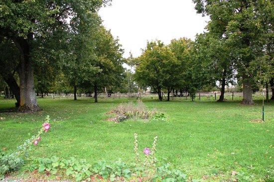 Le Clos de la Garenne : le parc