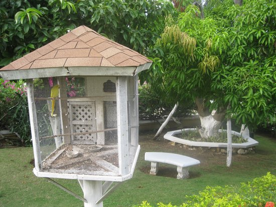 Relax Resort: One of many tropical bird cages