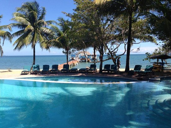 Hamanasi Adventure and Dive Resort: View from Bar/porch..pool to ocean.