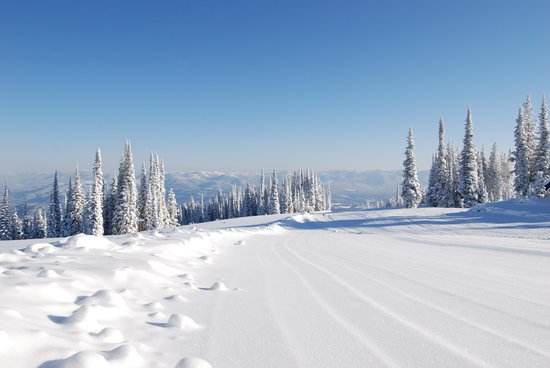 Schweitzer Mountain Resort Lodging: Courduroy