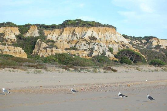 PARADOR DE MAZAGON: Playa de Mazagón