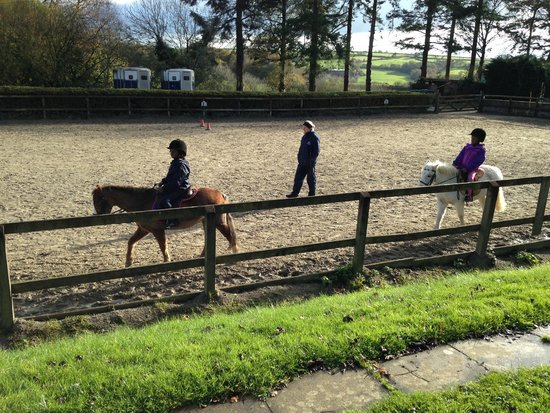 Kings Nympton, UK: Horseriding