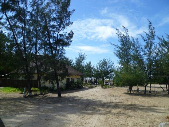 Zalala Beach Lodge: View from the lodge toward the beach