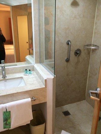 One Ciudad De Mexico Alameda: Baño completo y limpio, las toallas de buena calidad. Cuenta con secadora de cabello.