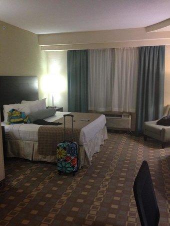 BEST WESTERN PLUS Fort Lauderdale Airport South Inn & Suites: Room View