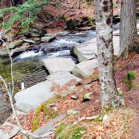 Claryville, estado de Nueva York: Beautiful hike
