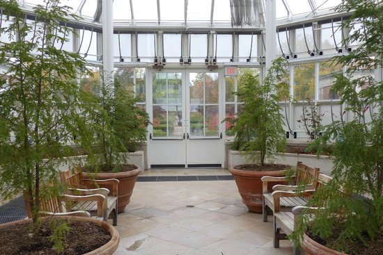 The K.C. Irving Environmental Science Centre and Harriet Irving Botanical Gardens: Greenhouse