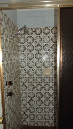 Matthew Flinders Motor Inn: Shower cubicle