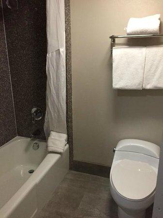 Holiday Inn Atlanta - Northlake: Toilet and Tub