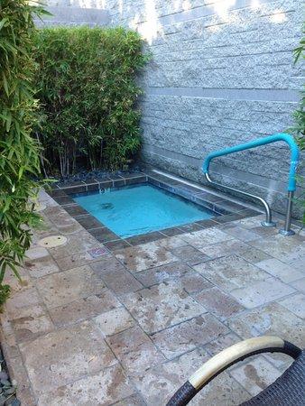 Ice Cold Plunge Pool Spa Avania Pinterest Plunge