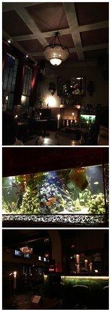 Les Halles: L aquarium