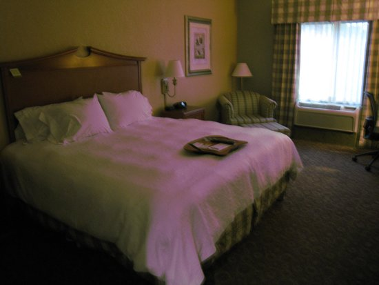 Hampton Inn & Suites College Station / US 6-East Bypass : Room # 105