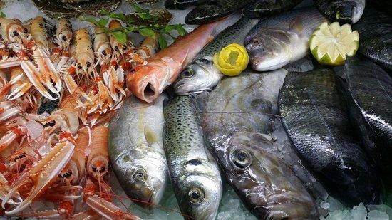 El Pescaito de Armilla