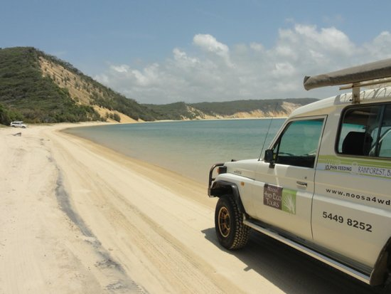 Noosa 4WD Eco Tours - Day Tours