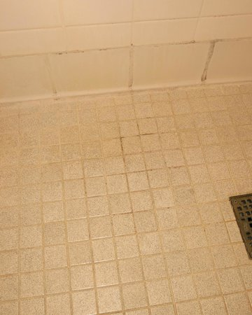 Renaissance Portsmouth-Norfolk Waterfront Hotel: Mildewed and Dirty Shower Floor - Handicapped Room