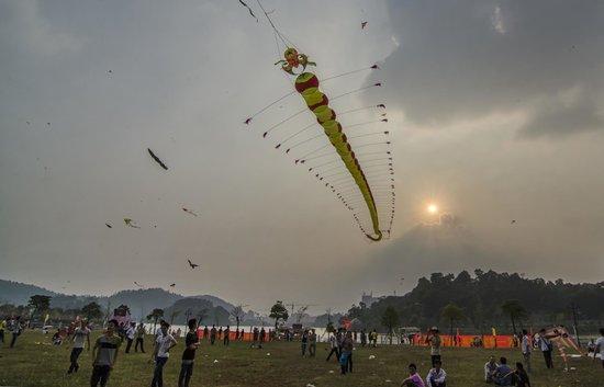 Mandarin Duck Lake Park : Duck Lake Park - Kite Festival