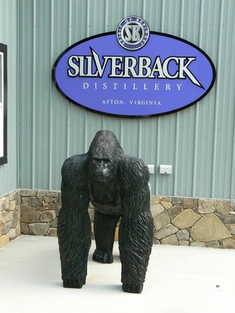 "Afton, VA: ""Silverback"" awaits your arrival!"