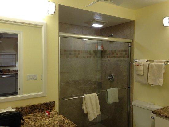 Siesta Key Inn : Walk in shower