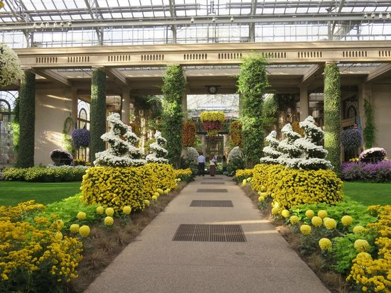 Conservatory 39 S Fall Display Picture Of Longwood Gardens Kennett Square Tripadvisor