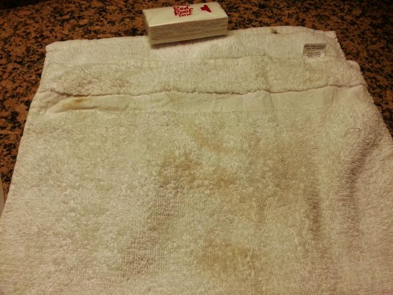 Red Roof Inn Atlanta - Suwanee/Mall of Georgia: The Filthy Hand Towel