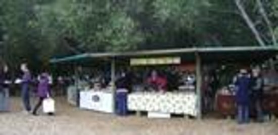 Wild Oats Community Farmers Market: some of the stalls before the crowds arrived