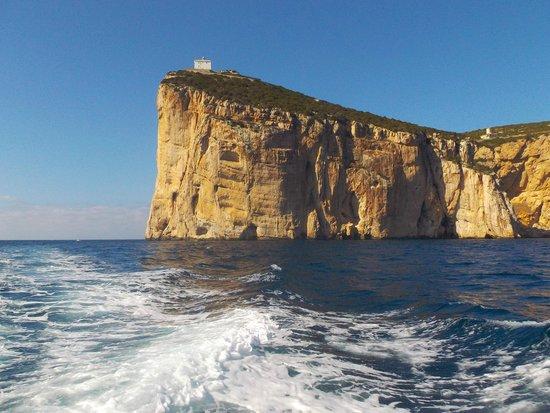 Capo Caccia Vertical Cliffs: Capo Caccia from the boat.