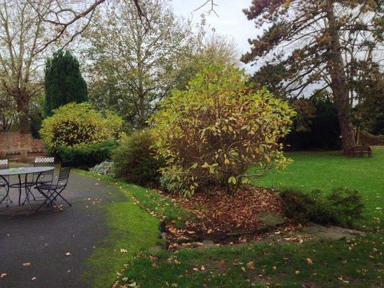 Hawkwell House Hotel: garden